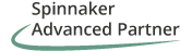 Spinnaker Advanced Partner SAP support